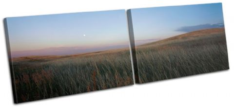 Field Moon Landscapes - 13-2146(00B)-MP14-LO